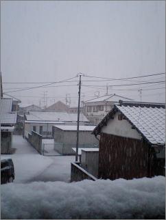 snow-covered.jpg